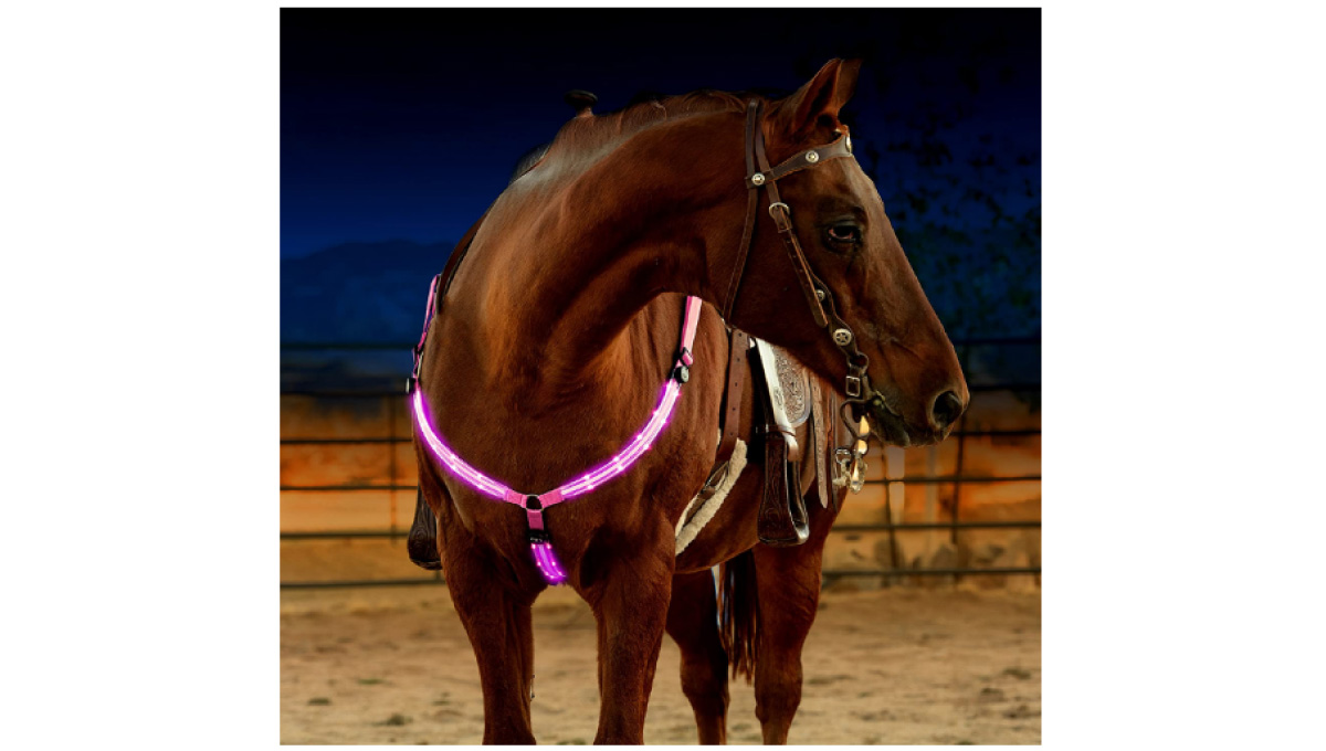 LED-Horse-Breastplate-Collar