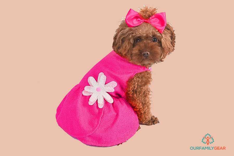 dooney pink dogs dress,