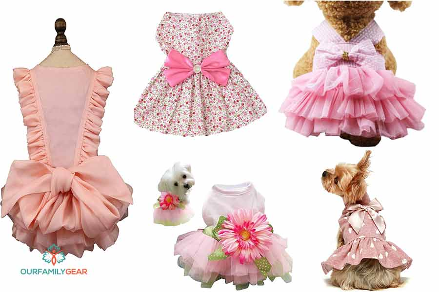 dogs dress
