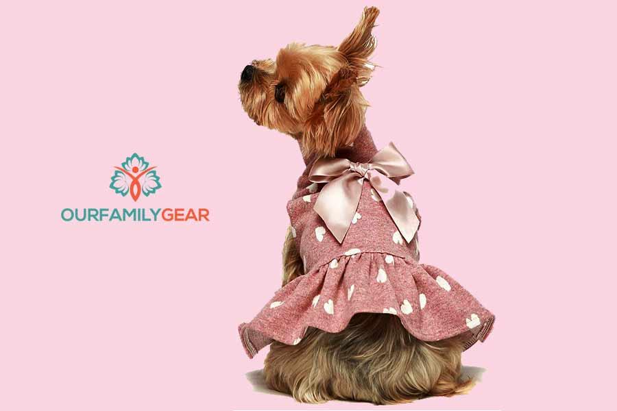 lucky dogs dress socks,