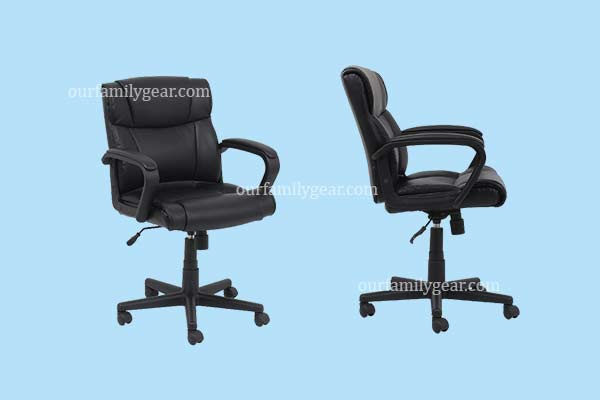 amazon computer chair,,<br>lifeform chair,